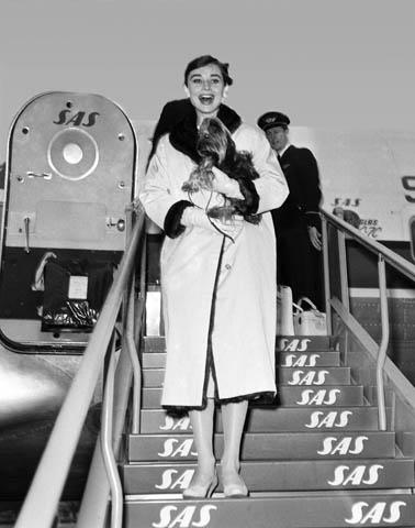 Audrey Hepburn and pet dog