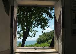 albero_finestra